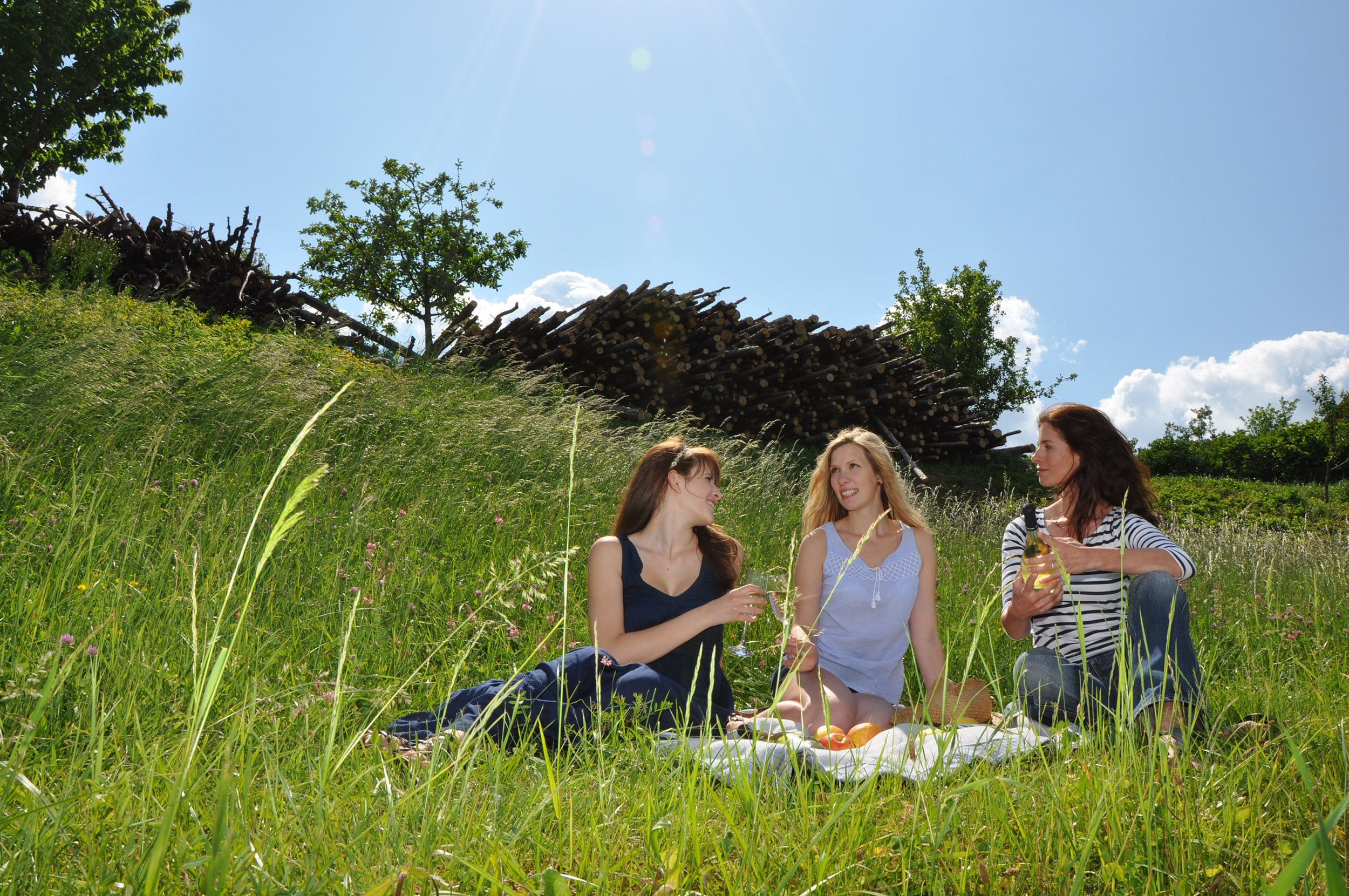 Picknick im Wohlfühlgarten